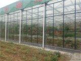 智能玻璃温室,玻璃大棚,玻璃温室内部温室管理