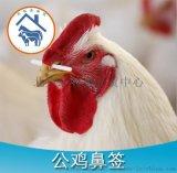 公鸡鼻签,公鸡鼻栓,公鸡阻食棒