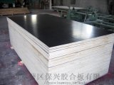 建筑模板 建筑木模板