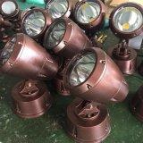 专业生产LED投光灯 照树灯 订做特殊专用灯具