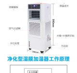 大功率环保室内保湿加湿器