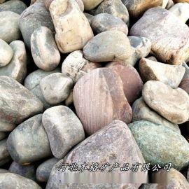 本格厂家供应白色鹅卵石 园艺装饰用高抛光鹅卵石