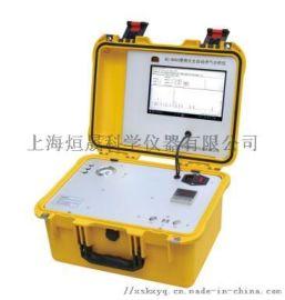 便携式天然气分析仪 燃气热值分析仪