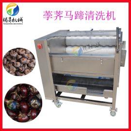 果蔬清洗机 荸荠 水栗清洗去泥机