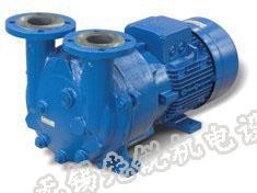 佶缔纳士NASH 2BV5水环式真空泵, 原西门子真空泵