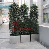 過道 陽臺 樓頂 不鏽鋼大型綠化種植花盆 不鏽鋼大花箱定做