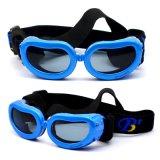 特小碼寵物太陽眼鏡 狗狗防護鏡 BP-2060
