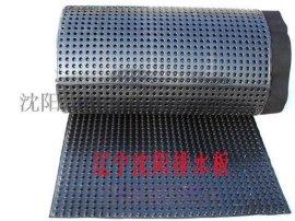 沈阳滤水板H-20-1000克黑色塑料材质