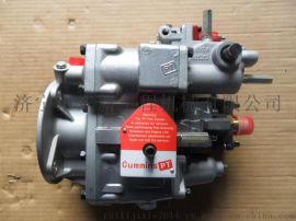 山推推土机配件 康明斯燃油泵P3165437