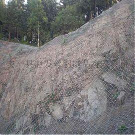 护坡网.高速路护坡网.山体护坡网.隧道护坡网厂家