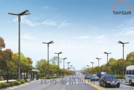 泰格LED006道路照明,熱鍍鋅路燈杆,新農村路燈