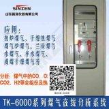 焦炉煤气电捕焦氧含量在线分析仪生产厂家