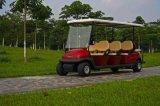 朗動11座高爾夫觀光車