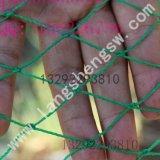 大量供应12股宽幅尼龙野鸡养殖网,家禽养鸡网