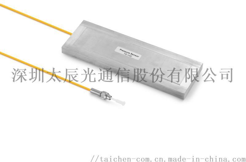TS-WI-40/80光纤光栅温度监测系统