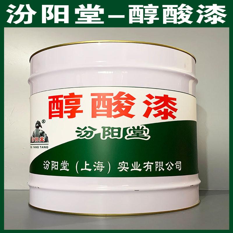 醇酸漆、防水,防漏,性能好