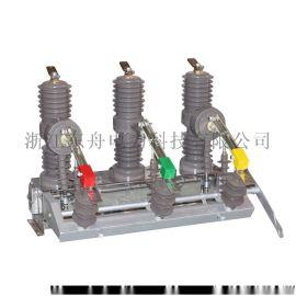 東舟電力廠家直銷 ZW32型戶外柱上高壓真空斷路器