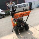 拋雪機 小型自走式滾刷掃雪車剷雪機 捷克廠家直銷