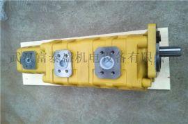 【批发】泊姆克齿轮泵P7600-F100NO367 6G配套临工20吨压路机,高压齿轮泵
