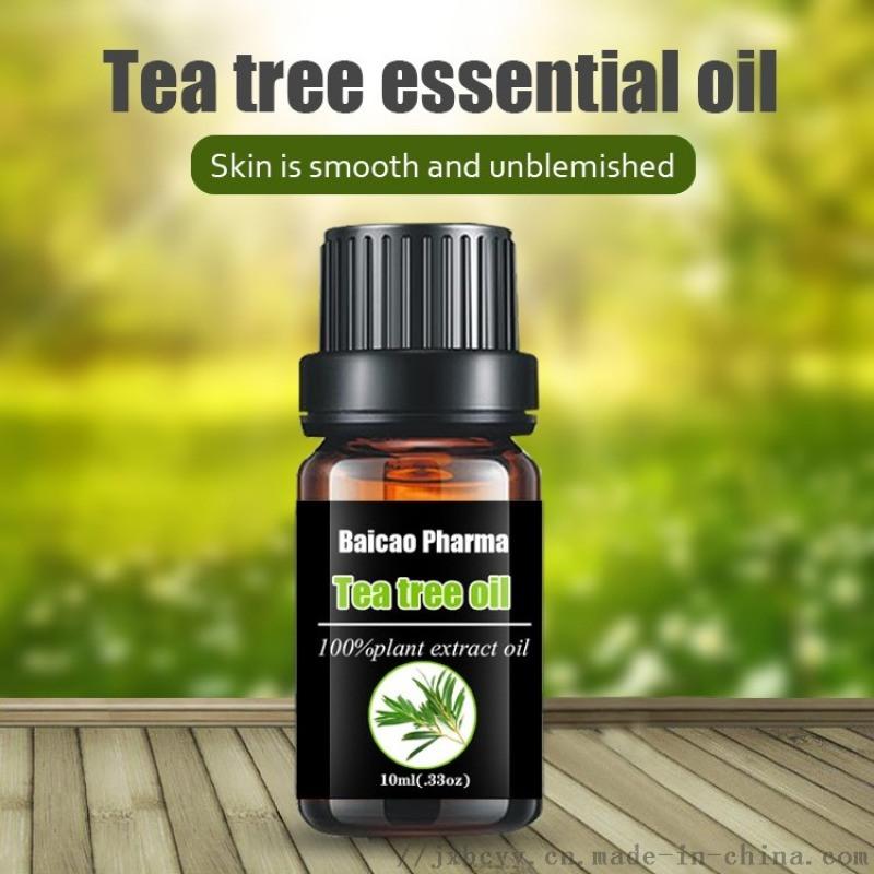 茶树油 茶树精油; 互叶白千层油