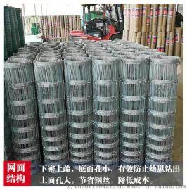 草原网围栏   镀锌钢丝网围栏  养殖网围栏