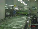 马铃薯清洗机器,马铃薯清洗设备,马铃薯毛刷清洗设备