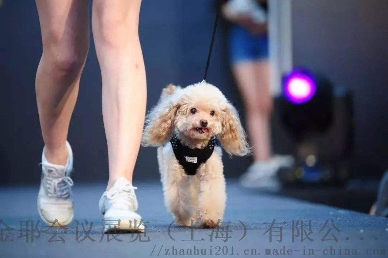 2021南京宠物医疗展