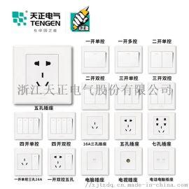 天正电气(TENGEN)K1  开关类 全套系列  大板荧光开关 白色 家用墙壁86型带荧光开关 面板开关