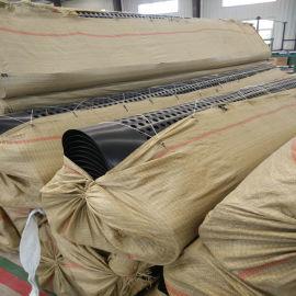 内蒙古高密度聚乙烯HDPE防护排水板量大批发