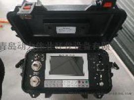 DL-6300D大流量高低浓度颗粒物烟尘烟气测定仪