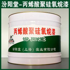 丙烯酸聚硅氧烷漆、防水,防漏,性能好