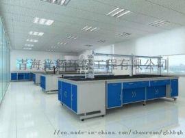 供新疆水净化工程和乌鲁木齐实验室净化工程哪家好