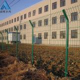 景區園林隔離圍網/魚塘防護隔離網