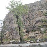 山体防护网供应. 护坡防护网报价. 山体落石护坡防护网