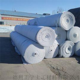 厂家直销路面养护土工布