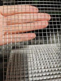 现货不锈钢电焊网镀锌电焊网电焊网片