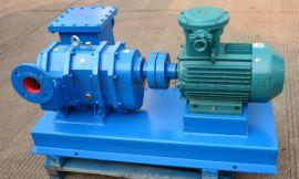 橡胶活塞转子泵