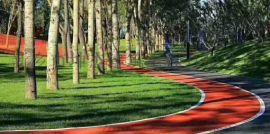 沥青路面改色 道路材料