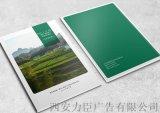 西安宣传册设计-底纹背景图片设计,大尺寸彩色印刷