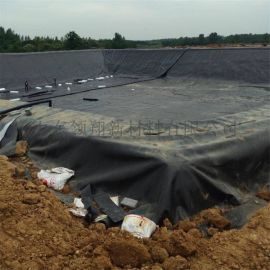 厂家直销鱼塘防漏抗氧化塑料膜 水池土工膜