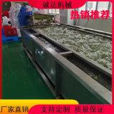 供應毛豆清洗機器,速凍毛豆清洗設備