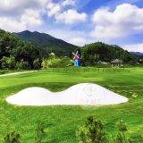 江苏苏州陆地新奇充气蹦床云朵蹦蹦云漂亮好经营