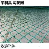 成都勾花防護網,熱鍍鋅勾花網,勾花防護網現貨供應