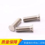 铝压铆螺钉 不锈钢压铆螺柱厂家批发