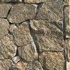 河北板岩 河北黃木紋 黃木紋片石 板岩黃木紋