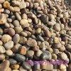 河北本格直销鹅卵石 变压器用鹅卵石 污水处理鹅卵石