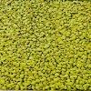 透水地坪增强剂 中德新亚 彩色透水路面 彩色防滑路面