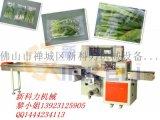 供應萵筍葉菜包裝機械