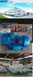 电动踏板冷却塔电机 YLT200L-20/4KW