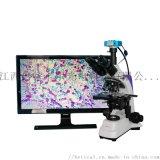 S500T-720HD高清生物顯微鏡